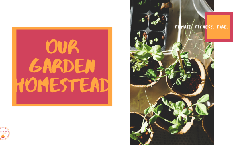 OUR GROWING GARDEN HOMESTEAD [2020plantings]