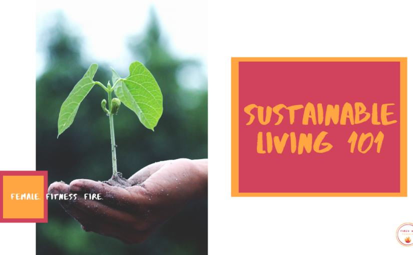 MY SUSTAINABLE LIVING JOURNEY SO FAR